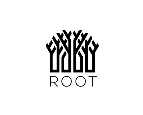 Get the root Huawei Honor 10 (instructions)