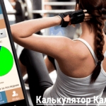 & Laquo; Calories Calculator SPORT & raquo; – We give myself up!